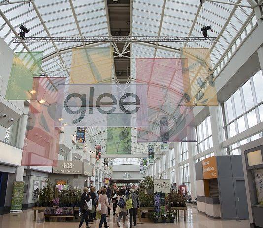 Glee 2017