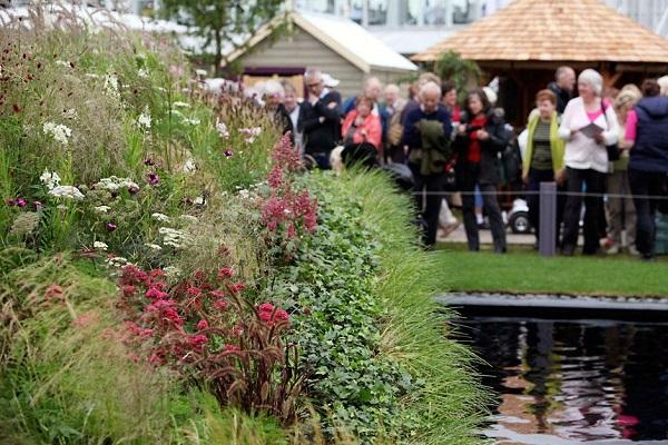 RHS Hampton Court Palace Flower Show image