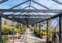 Clarenbridge garden centre image