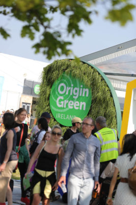 Origin Green, Crowds