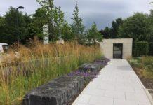Dublin Landscaping image