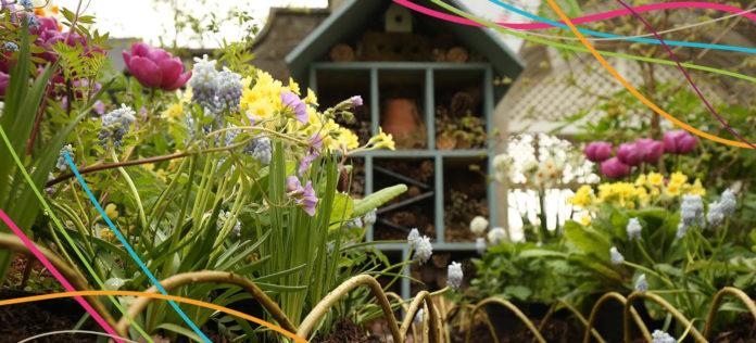 Garden Show Ireland picture