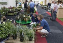 Sfeer Plantarium 2017