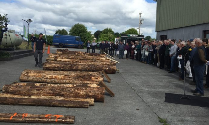 Aodan Kealey of Murray Timber Group explains the various timber assortments and prices with forest owners at Talking Timber 2018 in Mountbellew, Co Galway
