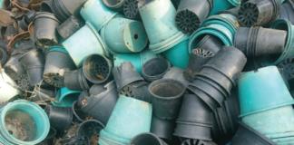 Plastic cups. ©NBRIAM/123RF