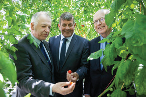 Admiring tomato varieties in the new glasshouse during the recent opening; Professor Gerry Boyle (Teagasc director), minister Andrew Doyle TD, Dr. Noel Cawley (Teagasc authority chairman)