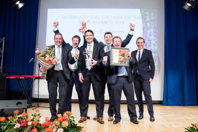 IGOTY 2018 Cut Flowers - Gold winner, JUB Holland (Jac. Uittenbogaard & Zonen BV), The Netherlands