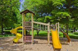 saltex-for-playgrounds