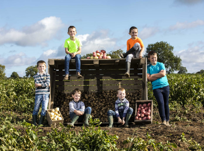 Bord Bia National Potato Day. Photo Chris Bellew /Fennell Photography Copyright 2018