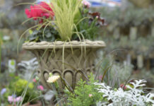 Sales in outdoor plant areas at garden centres across the country performed better than other categories in October.