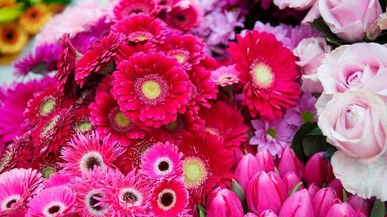 floradecora flowers image