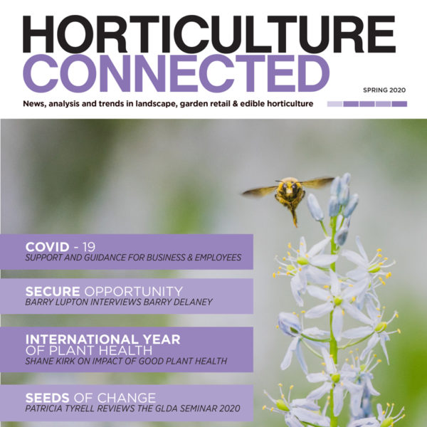 HC Spring 2020 front page