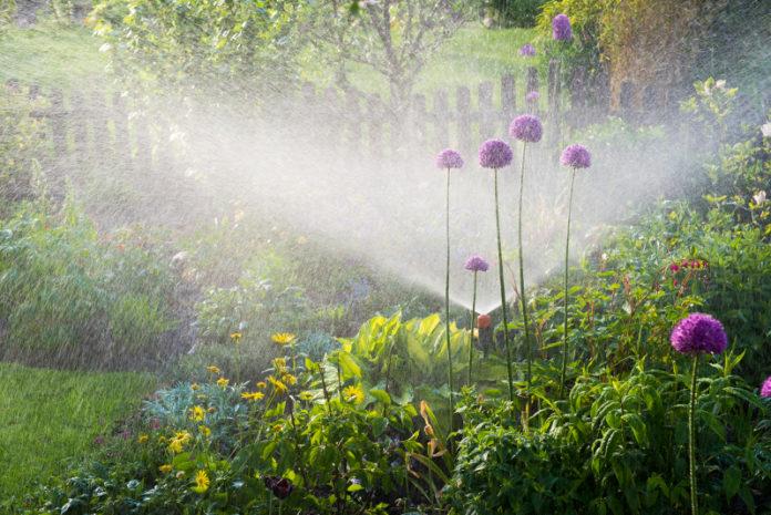Irritec_Irrigation_Garden_Irrigation0A-1