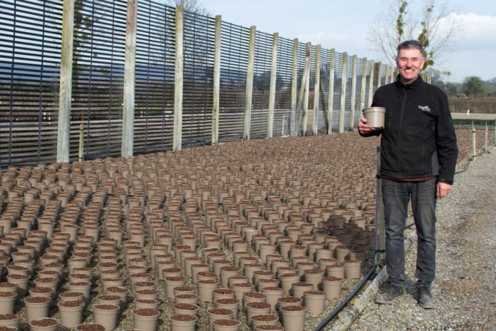 Steve Reed, Production Director of the Container Division at Wyevale Nurseries, with the Astilbes in the recyclable taupe plant pots.