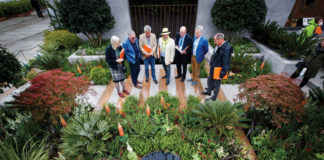 Urban gardener Kevin Dennis wins fourth Gold medal at Bloom with iconic urban sanctuary garden