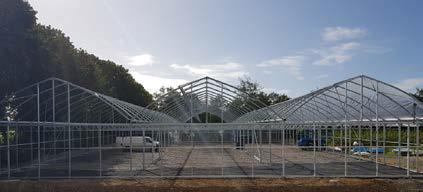 colm warren polyhouses multispan greenhouse