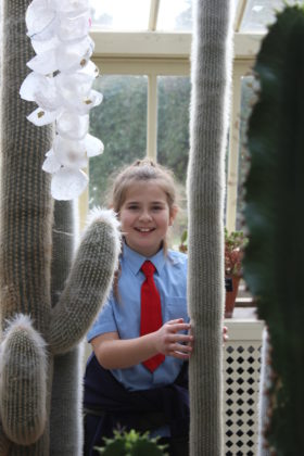 "Pictured is Ruby Gill of St. Oliver Plunket's, who showed no fear of the ""furry"" cacti in the Dessert Glass House of the National Botanical Gardens! The students got to explore the grounds, dig in to a planting workshop, and receive new seeds to bring back to their school. The school also received a sun bubble greenhouse for their own school garden as part of their 2019 Incredible Edibles prize. Visit www.incredibleedibles.ie to register today!"