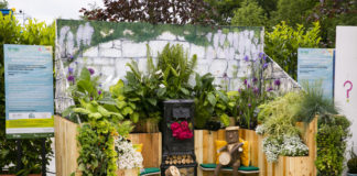 Bord Bia Bloom Festival 2019; Postcard Garden 'Sphere' by GRETB/Castlerea Men's Shed at Bord Bia's Bloom Festival in the Phoenix Park Dublin. Photo: Johnny Bambury/Fennells