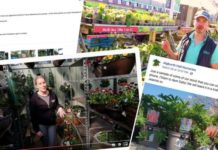 Virtual garden tours and personal online advice is the new way of business