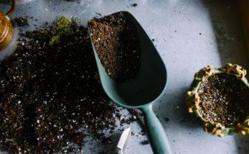 An image of gardening