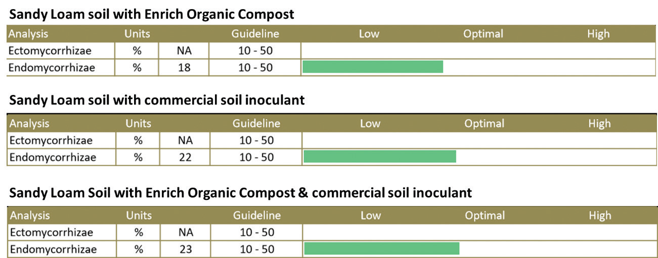 (FIGURE 4) MYCORRHIZAE FUNGI IN PLANT ROOTS AFTER SIX MONTHS GROWING OF RAISED BEDS AMENDED WITH INOCULANTS