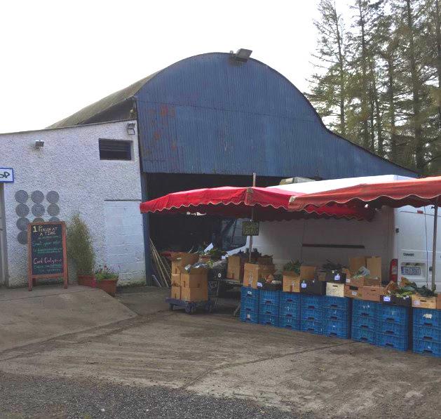 Image of Castleruddery Organic Farm in County Wicklow