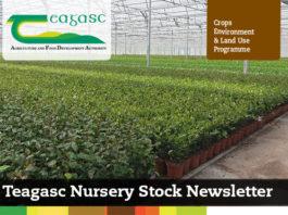 Teagasc Nursery Stock E Bulletin Number 4