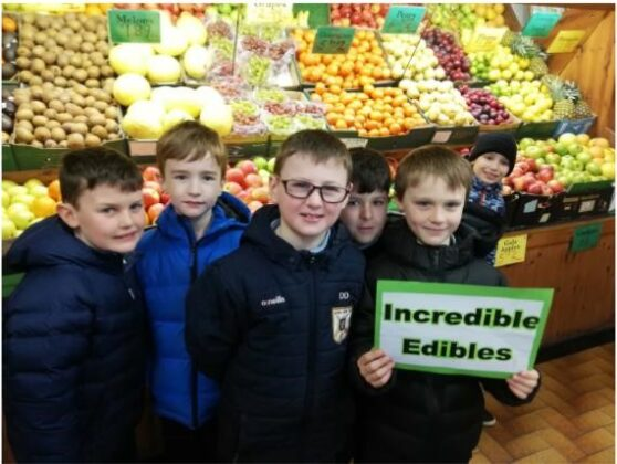 Ms Helena Hyland's 3rd class from Boys National School, Athenry, Co Galway were crowned first place winners of Incredible Edibles.