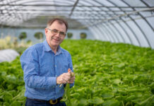 Photo Dylan Vaughan Pat FitzGerald, Founder and CEO at Beotanics, pictured at Beotanics. The Kilkenny-based firm is growing international reputation for innovation in niche food crop production across the world and is investing €1 million in a new Research & Development Centre which includes a plant science laboratory, plant quarantine and R&D greenhouse at its headquarters in Stoneyford, Co Kilkenny.