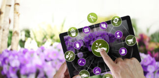 gardening equipment e-commerce concept, online shopping on digital tablet, hand pointing and touch screen with tools icons, on spring flower plants background