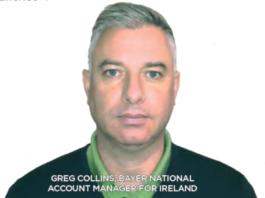 Greg Collins