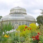 National Botanic Gardens and Ashtown