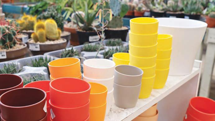 Empty plant pots