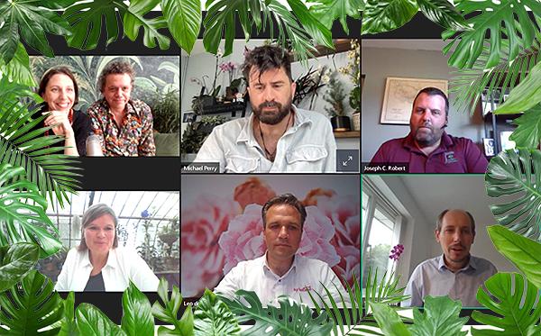 FCI House Plants Webinar